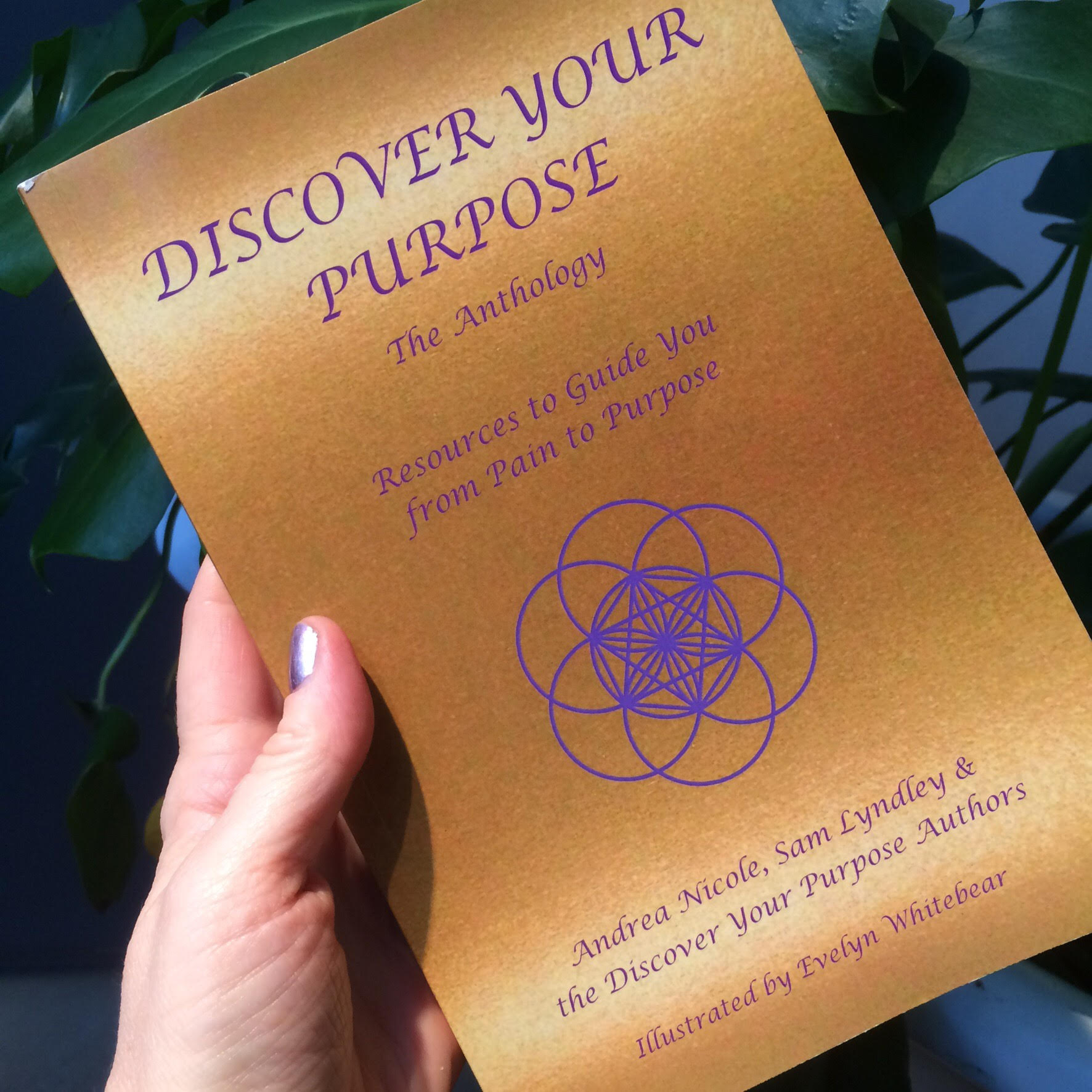 Discover your purpose – The Anthology